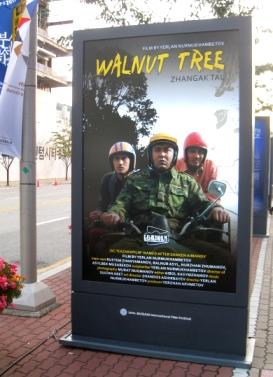 Walnut tree.JPG
